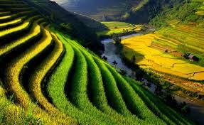 Du Lịch Việt Nam